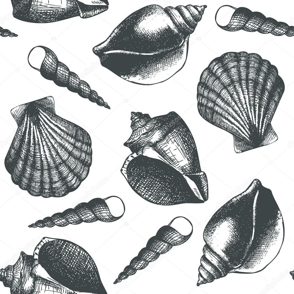 Hand drawn pattern with sea shells