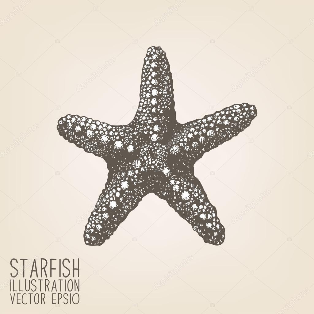 Hand drawn sea star