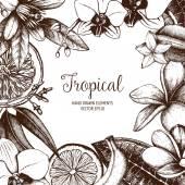 Fényképek Hand drawn tropical fruit background
