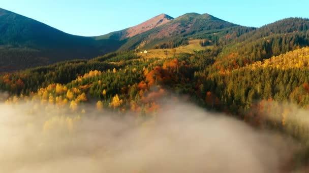 Letecký pohled na barevné podzimní Karpatské hory. Horské hřebeny jsou pokryty jehličnatými a smíšenými lesy v jasných podzimních barvách. Níže můžete vidět vesnické domy.