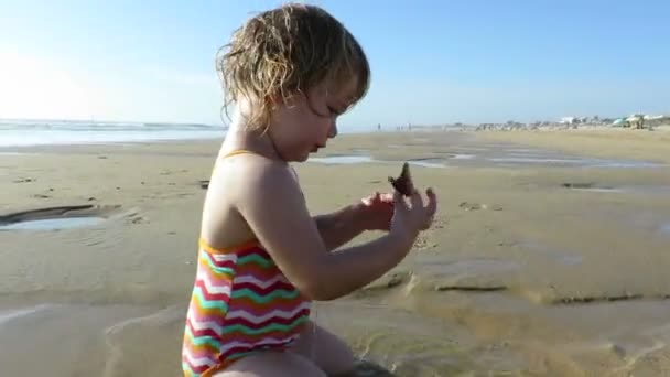 baby playing with sea shells
