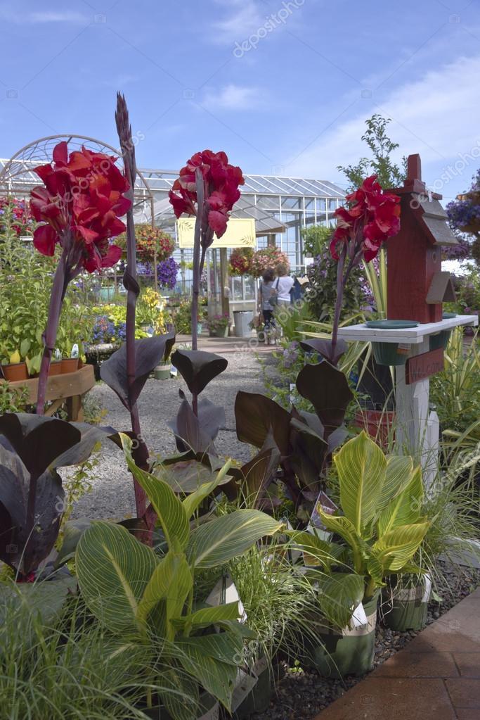 Farm and garden nursery in Canby Oregon.
