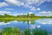 Spring summer landscape blue sky clouds river pond green trees