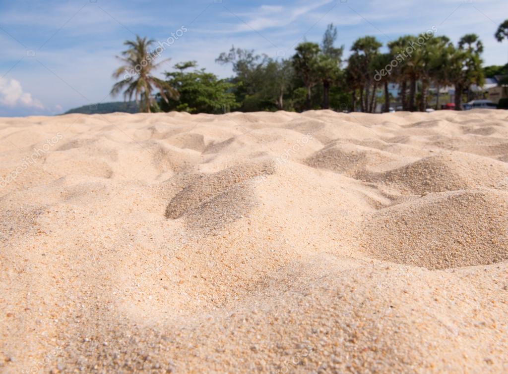 Fondo de textura arenosa de la playa de la arena foto de for Arena de playa precio
