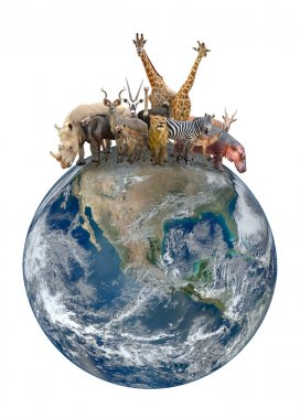 group of africa animal with planet earth