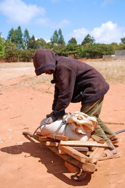 An African child to work with his wheelbarrow