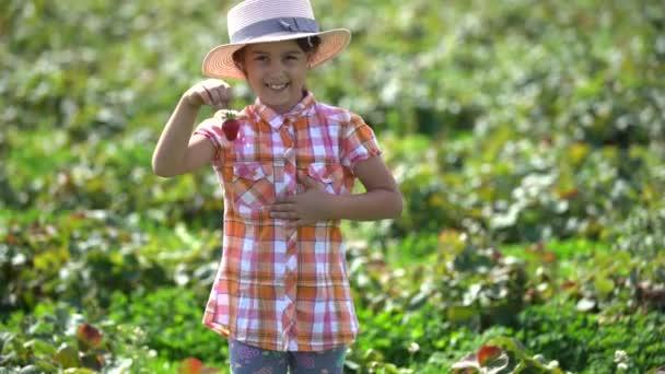Vtipné holčička sběr a jíst jahody na bio farmě v teplý slunečný den
