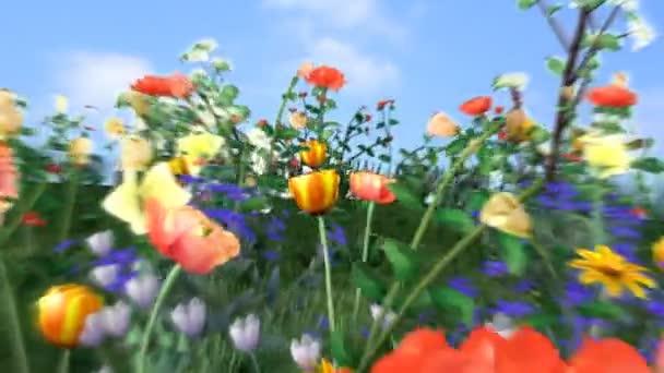 Tanec květin-HD, smykatelný