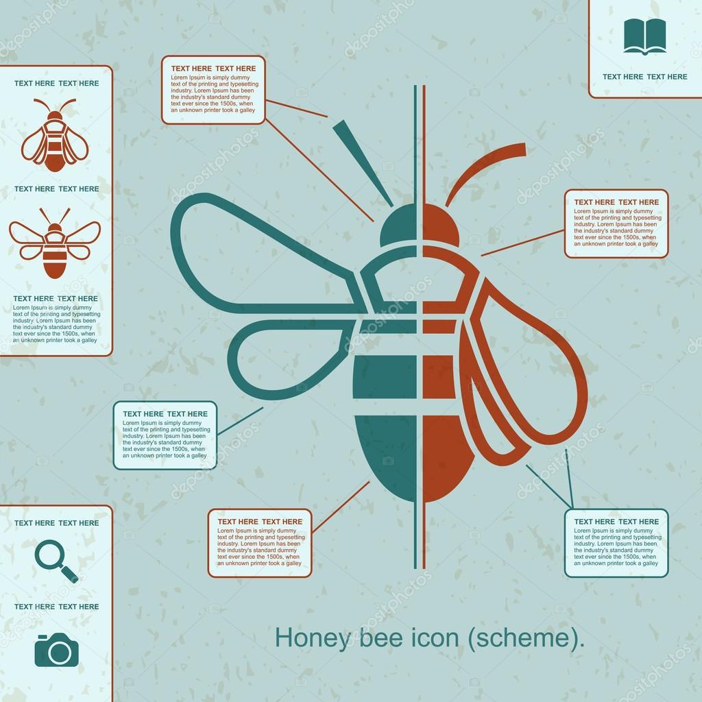 Honey bee icon flat style stock vector dendiz 65452945 honey bee icon flat style stock vector ccuart Gallery