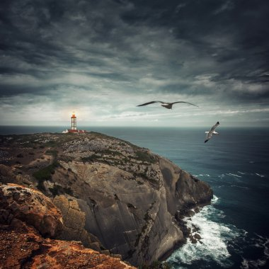 Coastline with a lighthouse and seagulls