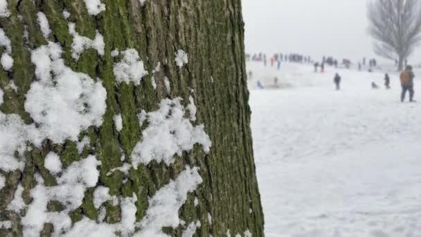 Aus der Ferne. Menschenmassen amüsieren sich an kalten Wintertagen und fahren auf einer Eisrutsche