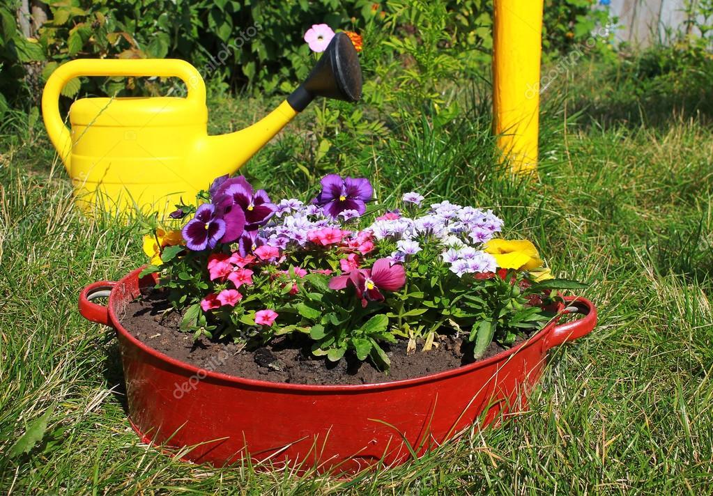 Ideen Fur Garten Blumen Im Alten Waschbecken Stockfoto C Kav777