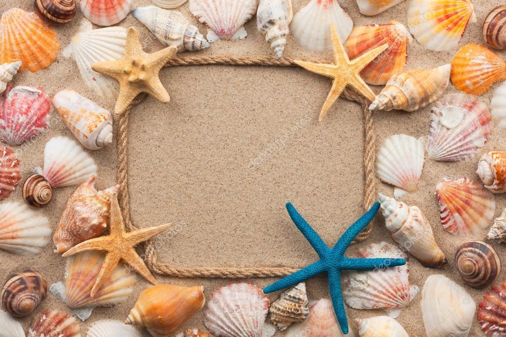 Hermoso marco de cuerda y conchas marinas, estrellas de mar sobre la ...