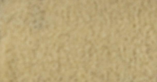 Soustředím se na pozadí rýžových zrn. Zaměření z rozmazaného pozadí na zaostřené.