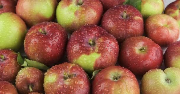 Přiblížení hromady zralých červených jablek v kapkách rosy. Ovocné pozadí