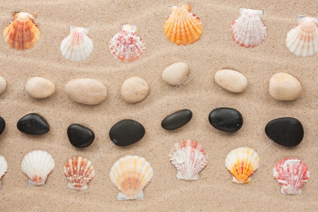 Marco de concha y piedra de arena ondulada — Foto de stock ...