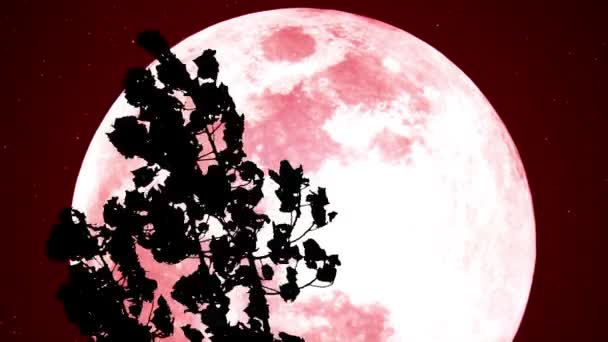 Red Moon in the Woods