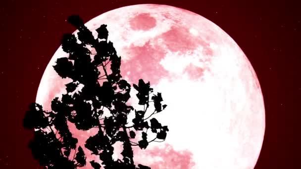 Červený měsíc v lese