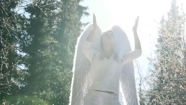 bílý anděl