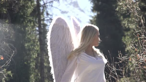 Dívka s andělskými křídly
