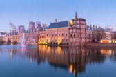 Natherlands parlament v Haagu