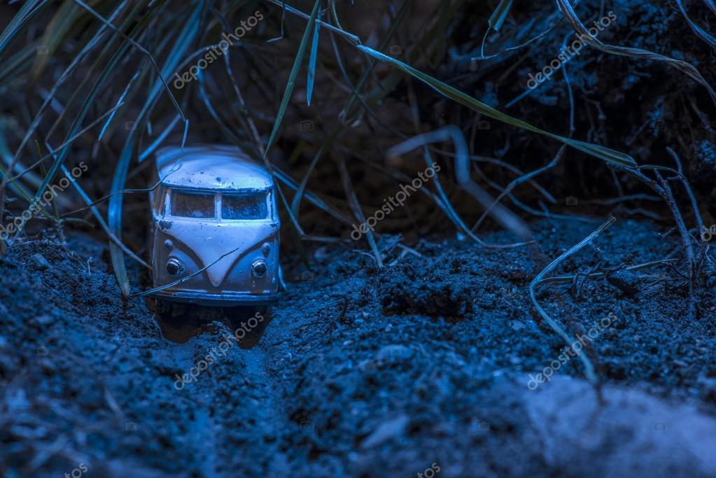 Small metal toy in nature