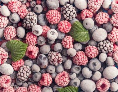 Frozen berries background