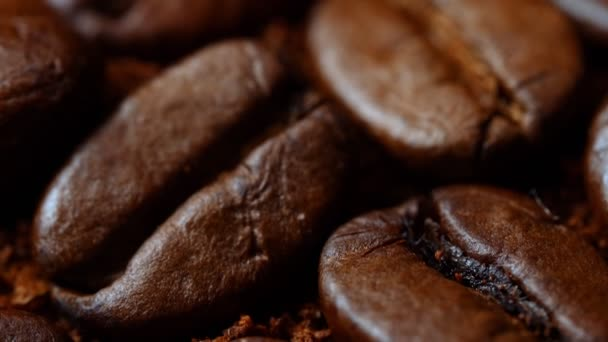 Macro view of coffee bean and ground coffee.