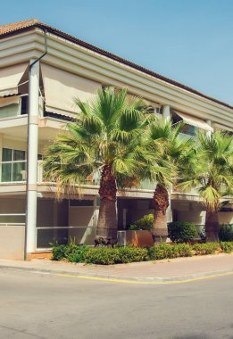 Portrait of tropical apartment building with palms.