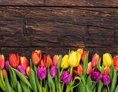 Čerstvý tulipány na staré dřevěné pozadí