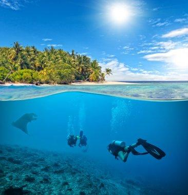Sualtı mercan kayalığı tüplü dalgıçlar ve manta ile