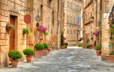 Colorful street in Pienza with many decoration flowers and trees, Tuscany, Italy stock vector