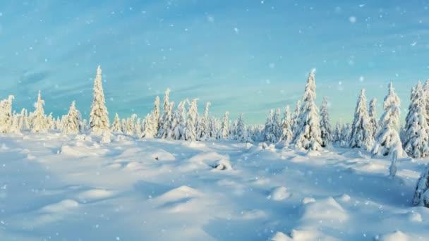 Zeitlupe fallenden Schnees mit Winterlandschaft im Hintergrund. Fallender Schnee Gefilmt mit High-Speed-Kinokamera, 1000fps. Foto der ländlichen Landschaft im Hintergrund.