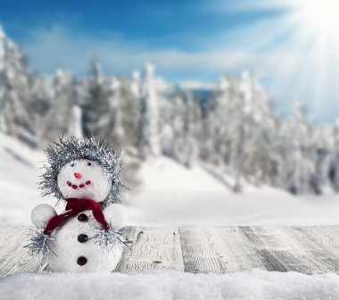 Winter snowy scenery with snow man