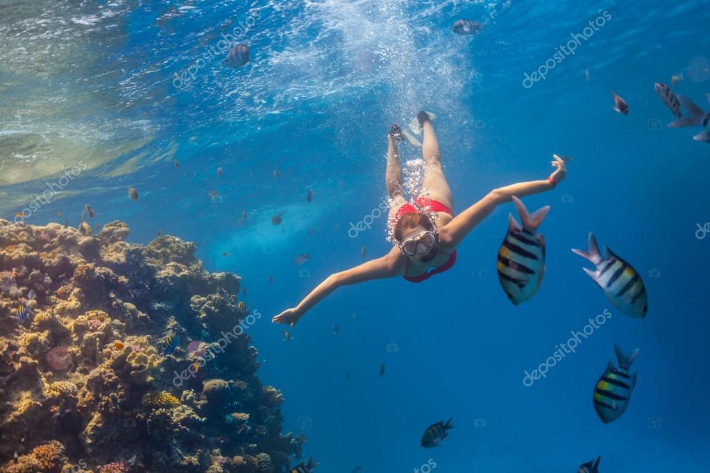 Freediver woman exploring coral