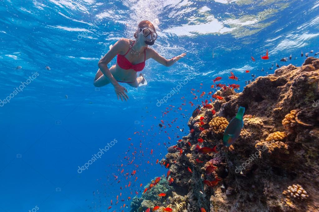 Freediver woman exploring coral