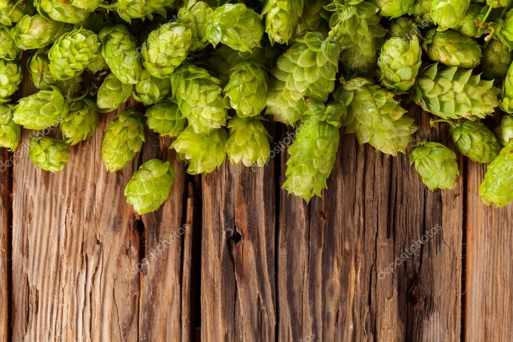 Fresh green hops on wooden desk