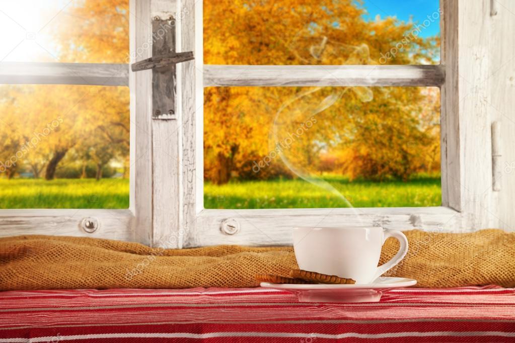 Vintage wooden window overlook autumn trees