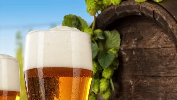 Pivní sklenice s chmelnice na pozadí