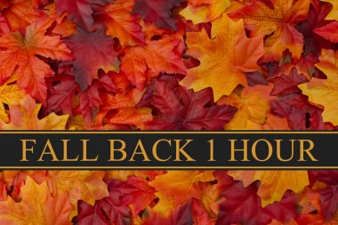 Fall Back Time Change Message
