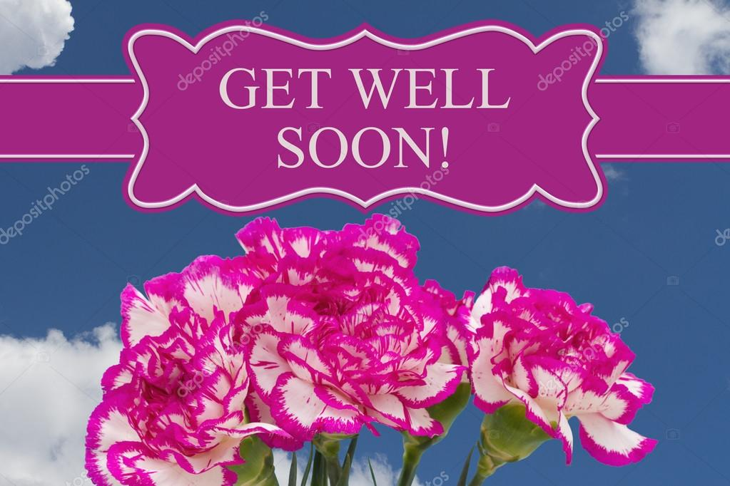 Get Well Soon Message With A Pink And White Peony Bouquet  Stock