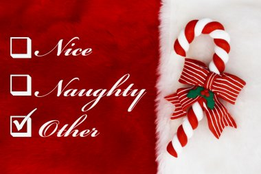 Naughty, Nice or Other