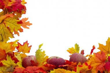 Autumn Leaves and Apples Background