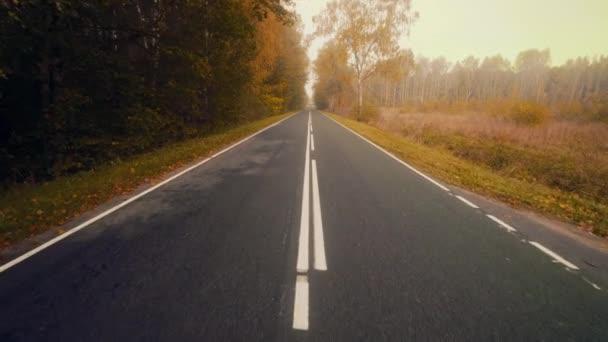 Cesta ve zlatém podzimním dni při západu slunce