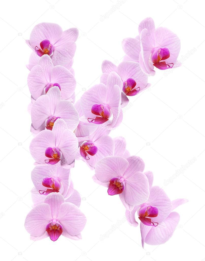 letra k de flores orquídeas foto de stock coffeemill 71976183