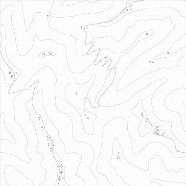 Topographic Map Texture