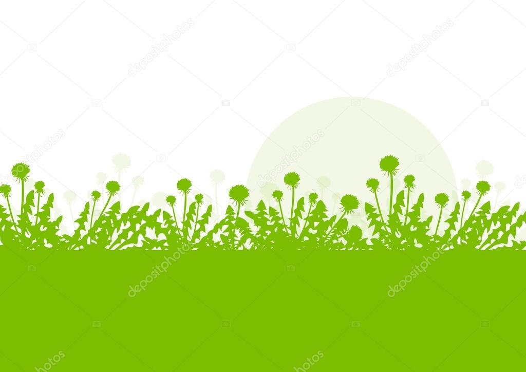 Spring landscape with dandelions flowers vector background green