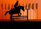 Horse jumping, overcoming obstacles, equestrian sport show with