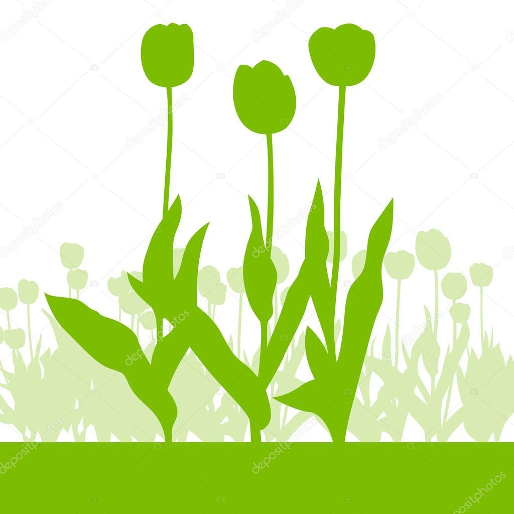 Tulips spring seasonal flower garden ecology concept detailed il
