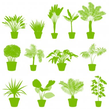 House indoor plants in pots set vector background green concept